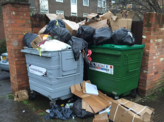 Rubbish and waste disposal services